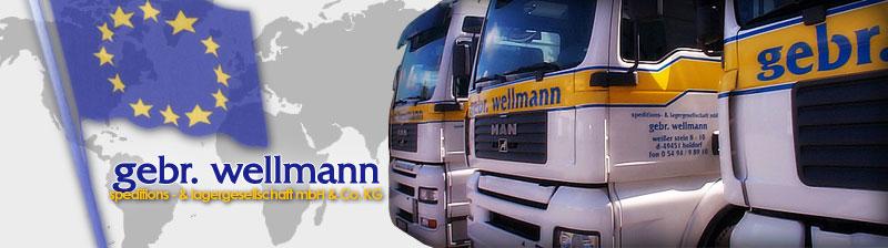 logo-gebr-wellmann